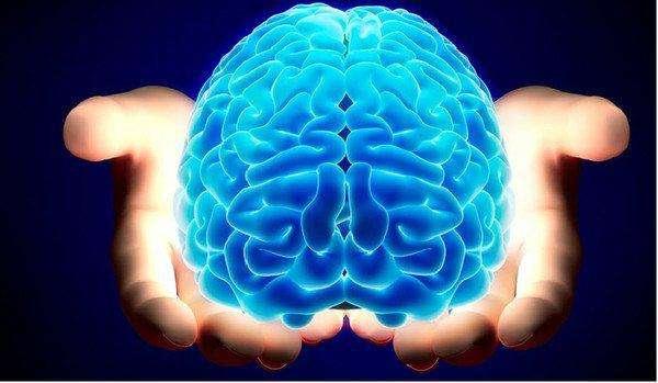 """手不能动、脚不能走、感官失灵,吸毒""""吸伤了""""大脑是种怎样的体"""