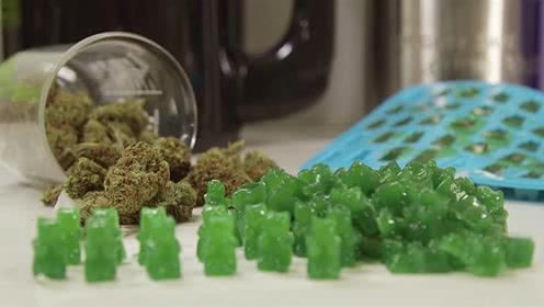 大麻合法化的后果已出现,一不小心可能中毒死亡!