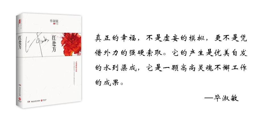 如何评价毕淑敏的小说《红处方》?