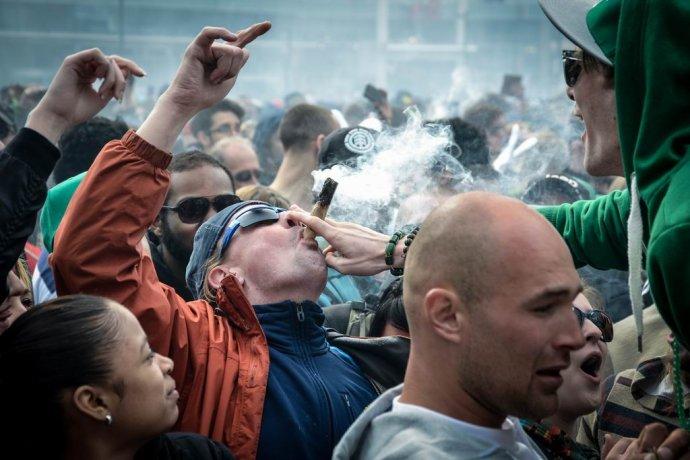 大麻定义为毒品只是政治正确?你应该先了解它的两面性