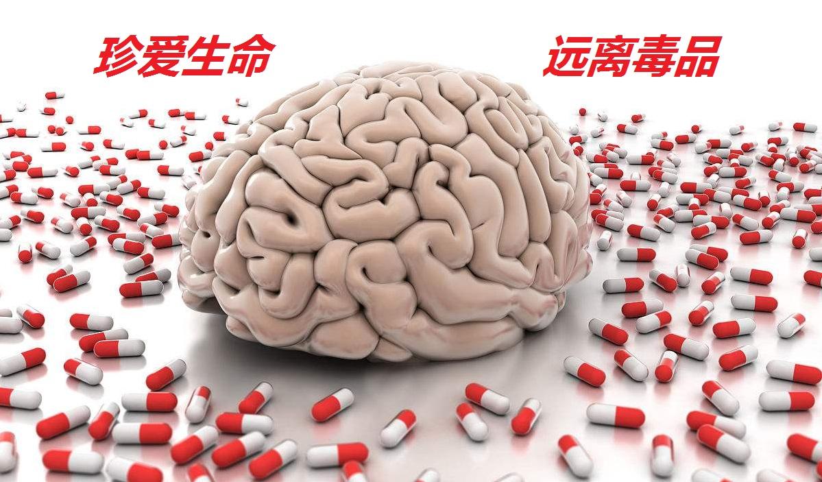 摇头丸对头脑的损伤是永久的吗?
