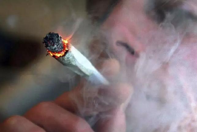 从大麻到冰毒,毒品是如何让人一步一步上瘾