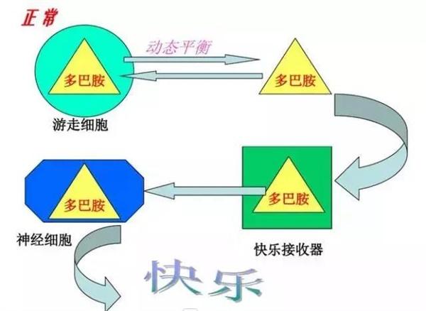 zhengchang kuaile.jpg